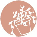 Gloriette • jardinerie • Lyon
